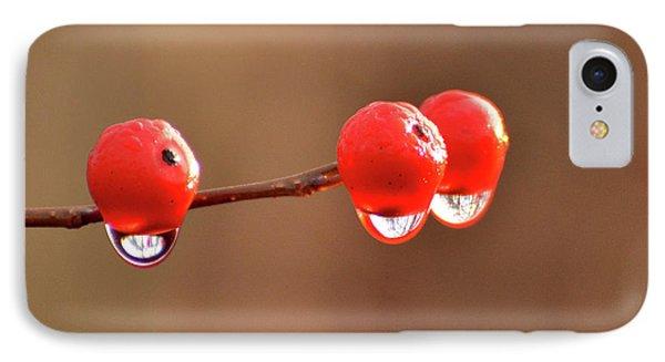 Droplets IPhone Case by Nancy Landry