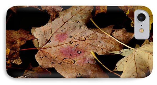 IPhone Case featuring the photograph Droplets On Fallen Leaves by Doris Potter