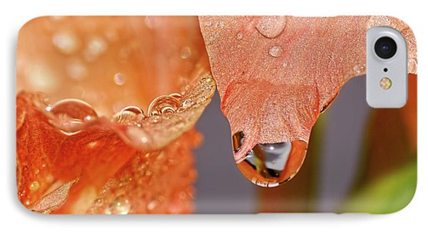 Droplets On Gladioli By Kaye Menner IPhone Case