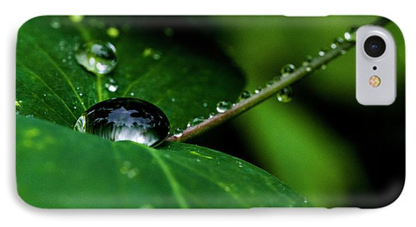 IPhone Case featuring the photograph Droplets On Stem And Leaves by Darcy Michaelchuk