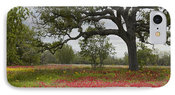 Drummonds Phlox Meadow Near Leming Texas IPhone Case by Tim Fitzharris