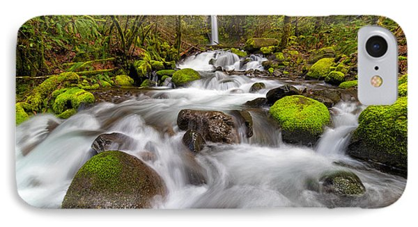 Dry Creek Falls In Spring Phone Case by David Gn