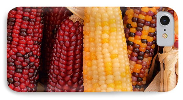 Dry Indian Corn IPhone Case by Jeff Lowe