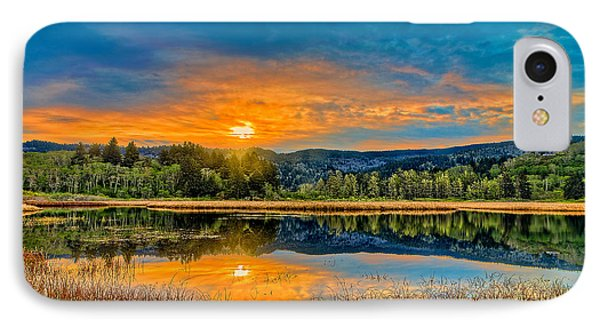 Dry Lagoon Spring Morning IPhone Case