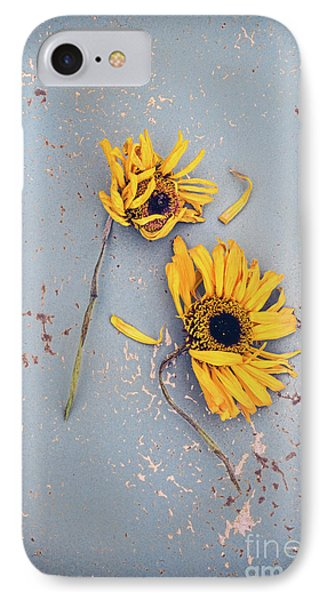 IPhone Case featuring the photograph Dry Sunflowers On Blue by Jill Battaglia