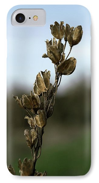 Drying Flower IPhone Case by Shlomo Zangilevitch