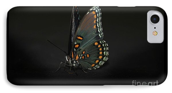 Drying Wings Phone Case by Judy Hall-Folde
