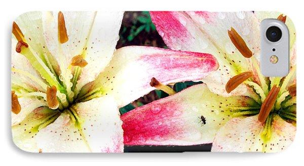 Dual Pinks II Phone Case by Amanda Kiplinger
