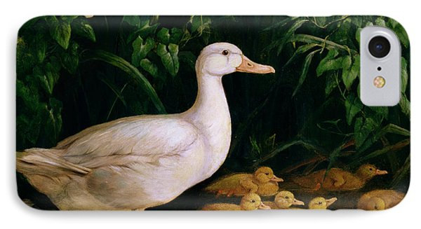 Duck And Ducklings IPhone Case by English School