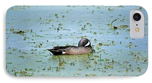 IPhone Case featuring the photograph Duck Bluegreen by Teresa Blanton