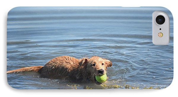 Duck Tolling Retriever With A Tennis Ball Swimming IPhone Case by DejaVu Designs