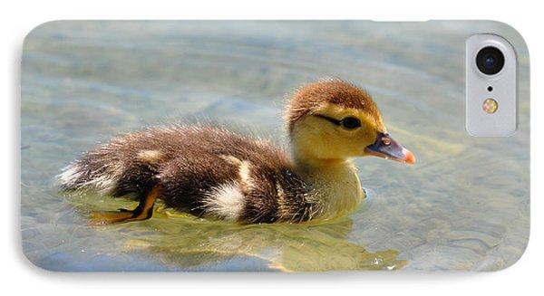 Duckling 7 IPhone Case by Teresa Blanton