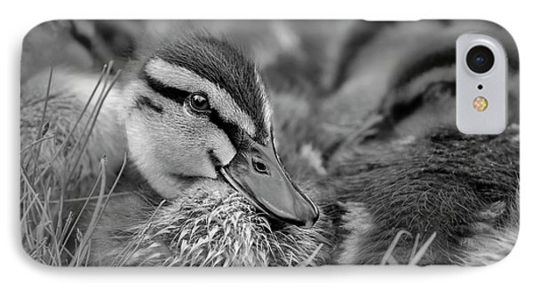 IPhone Case featuring the photograph Ducklings Cuddling Bw by Susan Candelario