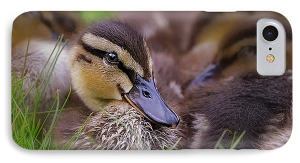 IPhone Case featuring the photograph Ducklings Cuddling by Susan Candelario