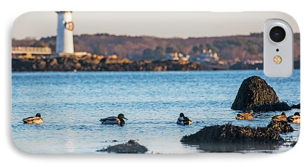 Ducks Congregating Near The Portsmouth Lighthouse Portsmouth Nh New Hampshire Rocks IPhone Case by Toby McGuire