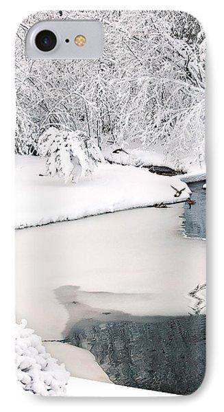 Ducks In Winter Glory IPhone Case by Gwen Gibson