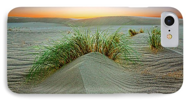 Dune Grass Of Bruneau Idaho IPhone Case