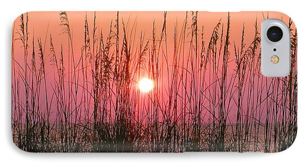 Dune Grass Sunset Phone Case by Bill Cannon