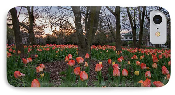 IPhone Case featuring the photograph Dusk At Sherwood Gardens by Chris Scroggins