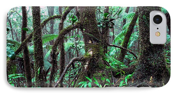 Dwarf Forest Mist El Yunque Phone Case by Thomas R Fletcher