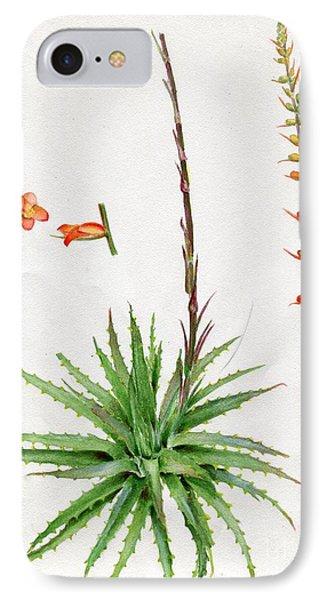 Dyckia Platyphylla IPhone Case