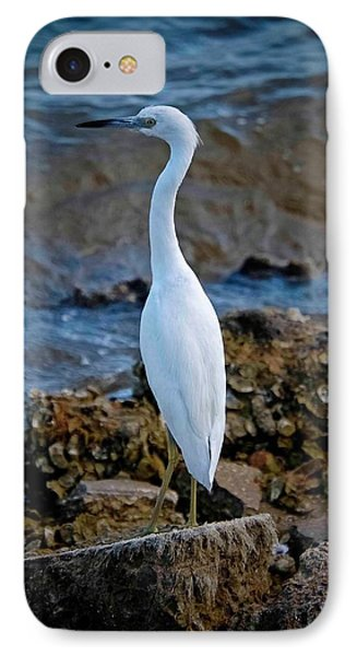 Eager Egret IPhone Case by DigiArt Diaries by Vicky B Fuller