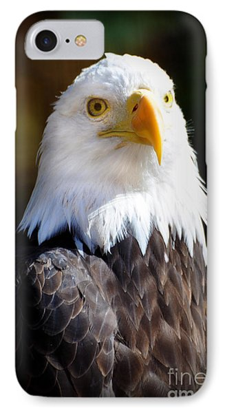 Eagle 23 Phone Case by Marty Koch