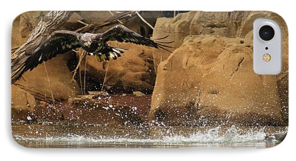 IPhone Case featuring the photograph Eagle Attack by Douglas Stucky