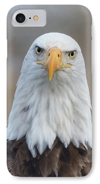 IPhone Case featuring the photograph Eagle Attitude by Angie Vogel