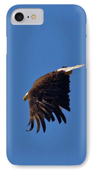 IPhone Case featuring the photograph Eagle Dive by Linda Unger
