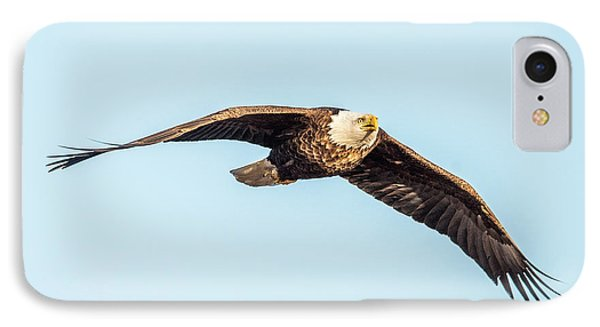Eagle Front View IPhone Case by Paul Freidlund