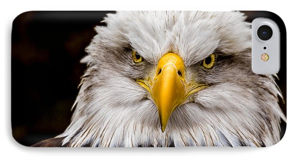 Defiant And Resolute - Bald Eagle IPhone Case by Rikk Flohr