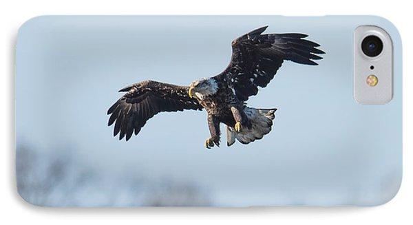 Eagle II IPhone Case by Paul Freidlund