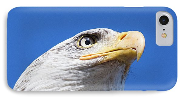 IPhone Case featuring the photograph Eagle by Jim  Hatch