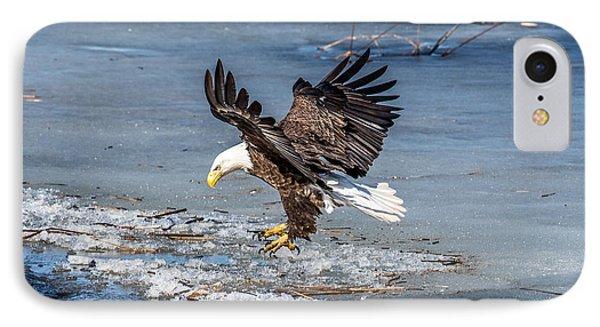 Eagle Landing IPhone Case by Paul Freidlund