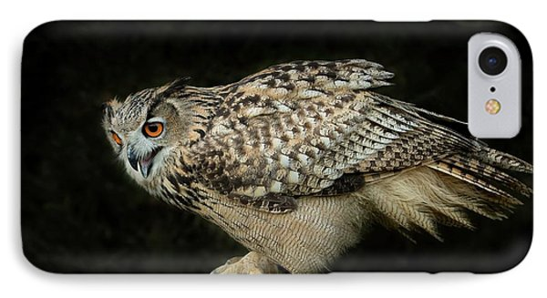 Eagle-owl IPhone Case by CR Courson