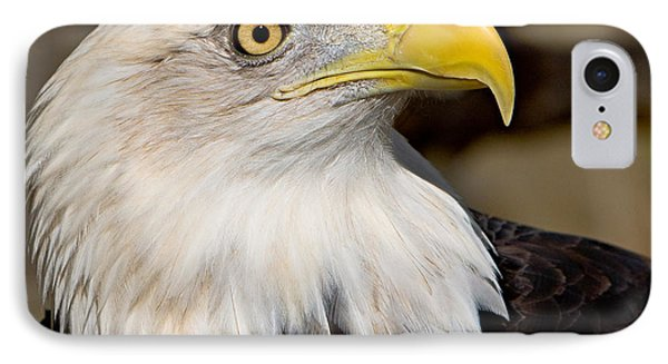 Eagle Power Phone Case by William Jobes