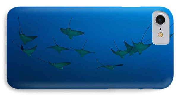 Eagle Rays In Ocean Phone Case by Dave Fleetham - Printscapes