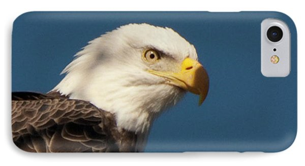 IPhone Case featuring the photograph Eagle by Rod Wiens