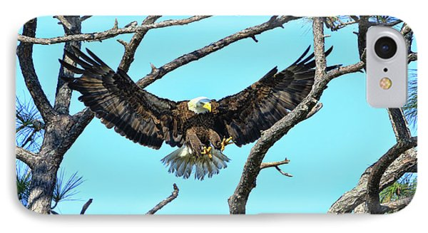 IPhone Case featuring the photograph Eagle Series Wings by Deborah Benoit