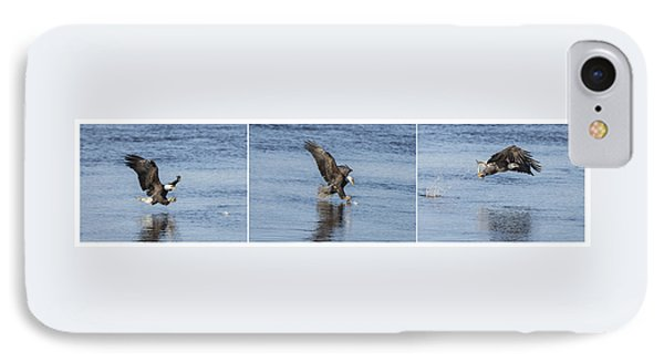 Eagle Triptych 2016-2 IPhone Case