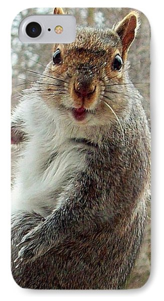 Earl The Squirrel IPhone Case by Robert Orinski