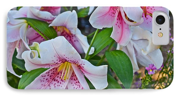 Early August Tumble Of Lilies IPhone Case