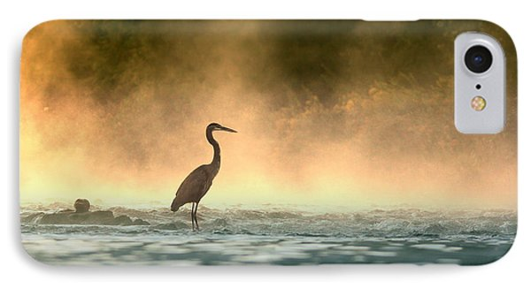 Early Bird IPhone Case by Rob Blair