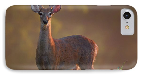 Early Buck IPhone Case