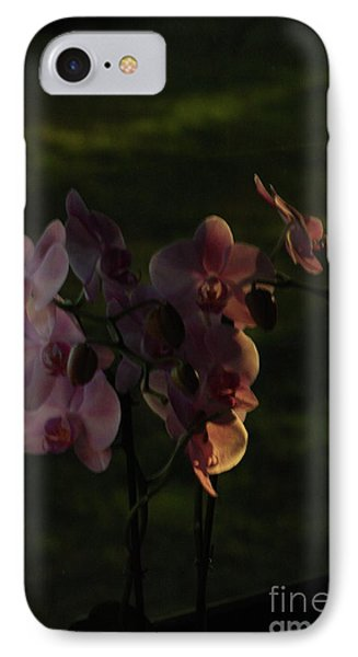 Early Evening Happy Place IPhone Case