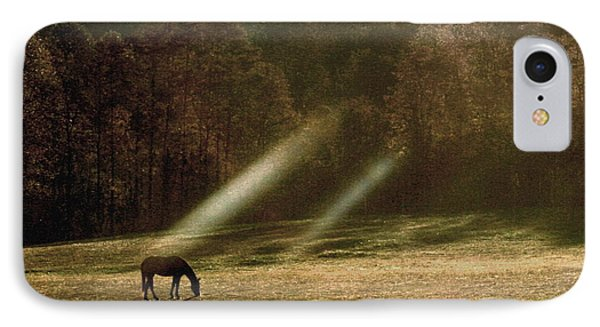IPhone Case featuring the photograph Early Morning Grazing by Diane Merkle