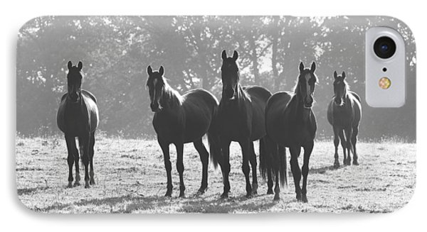 Early Morning Horses IPhone Case by Hazy Apple