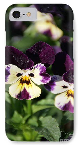 Early Morning Pansies IPhone Case by Andrea Jean