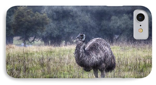 Early Morning Stroll IPhone Case by Douglas Barnard